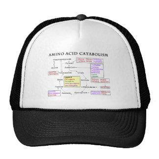 Amino Acid Catabolism Diagram Trucker Hat