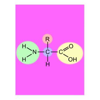 Amino Acid Diagram Postcard