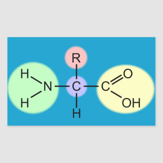 Amino Acid Diagram Rectangular Sticker