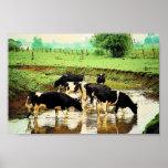 Amish acobarda el poster