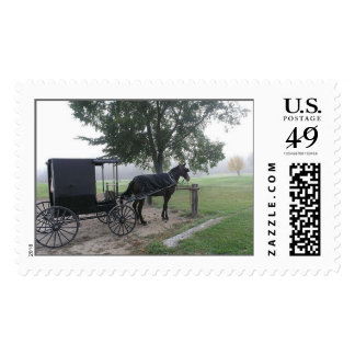 Amish Buggy, Hillsboro, Wisconsin Postage Stamp