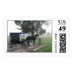 Amish Buggy, Hillsboro, Wisconsin Postage Stamp