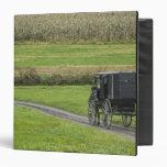 Amish buggy on farm lane, Northeastern Ohio, Binder