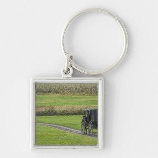 Amish buggy on farm lane, Northeastern Ohio, Keychain