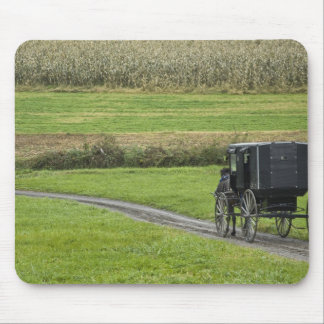 Amish buggy on farm lane, Northeastern Ohio, Mouse Pad