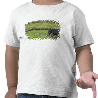 Amish buggy on farm lane, Northeastern Ohio, Shirt