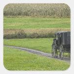 Amish buggy on farm lane, Northeastern Ohio, Square Sticker