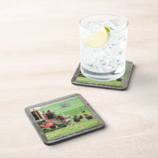Amish Coasters! Chickens and Roosters! Drink Coaster