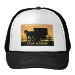 ¿Amish conseguidos? Gorros Bordados