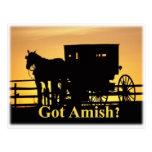 ¿Amish conseguidos? Tarjetas Postales