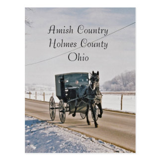 Amish Country Horse and Buggy-Postcard Postcard