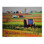 Amish Country Landscape Postcard