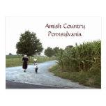 Amish Country Pennsylvania PA Postcard