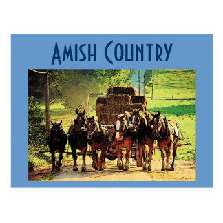 Amish Country Postcard - Customized
