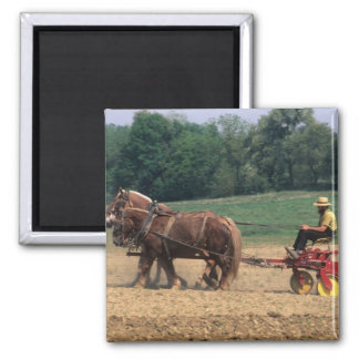 Amish Country simple people in farming with 2 Inch Square Magnet