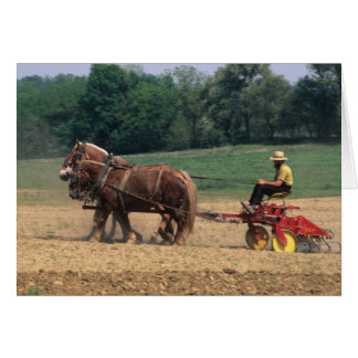Amish Country simple people in farming with Cards