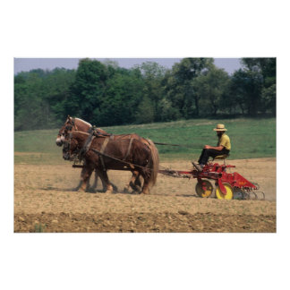 Amish Country simple people in farming with Poster
