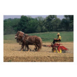 Amish Country simple people in farming with Print