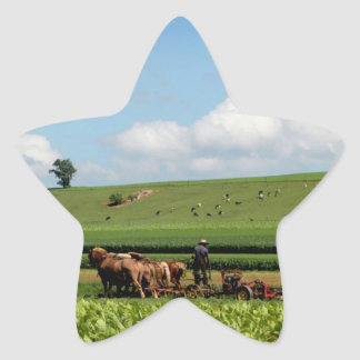 Amish Country Star Sticker