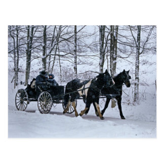 Amish Country Winter Carriage Ride-Postcard Postcard