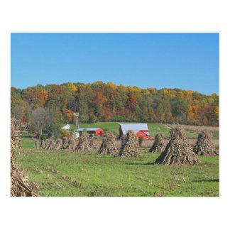 Amish Farm Panel Wall Art