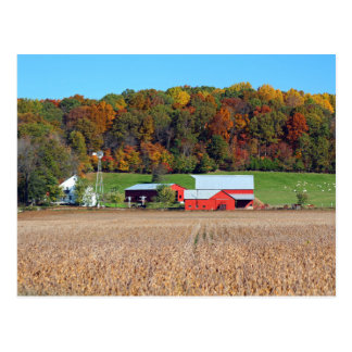 Amish Farm Postcard