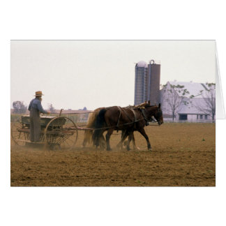 Amish farmer using a horse drawn seed planter card