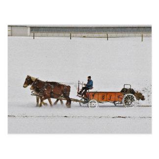 Amish Fertilizer Spreader-Postcard Postcard