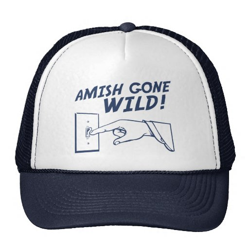 amish gone wild essay What he finds, however, is an amish-like community that is deathly afraid of humans,  half their forest is gone, they have little to no food left.
