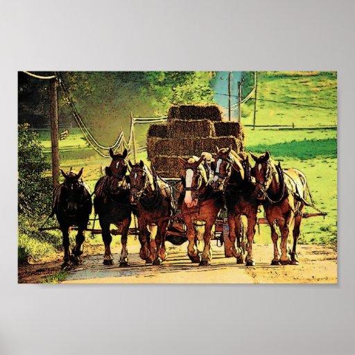 Amish Haywagon Poster