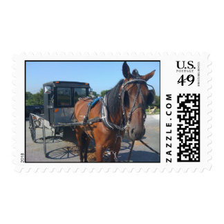 Amish Horse And Buggy, Lancaster PA Postage Stamp
