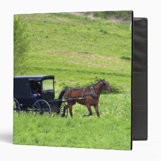 Amish horse and buggy near Berlin, Ohio. Binder
