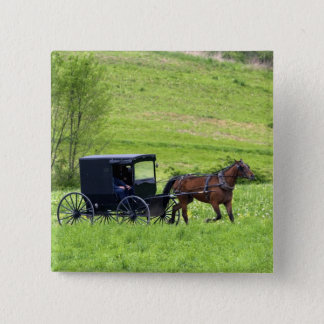 Amish horse and buggy near Berlin, Ohio. Pinback Button