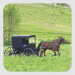 Amish horse and buggy near Berlin, Ohio. Sticker