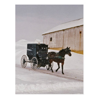 Amish Horse and Buggy on Winter Road-Postcard Postcard