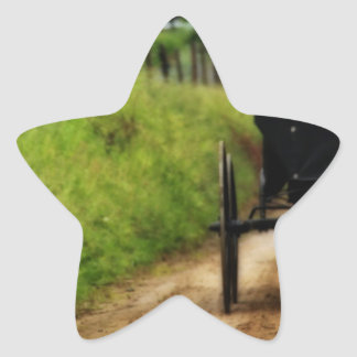 Amish Horse And Buggy Star Sticker
