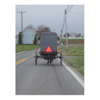 Amish Horse & Buggy Postcard