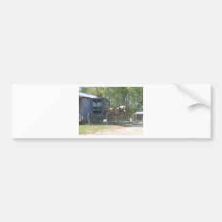 Amish Horse Bumper Stickers