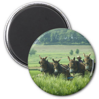 Amish Horse Drawn Plow Refrigerator Magnets