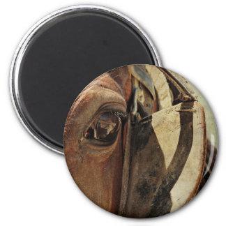 Amish Horse Eye Magnet