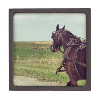 Amish Horse on a rural road Keepsake Box