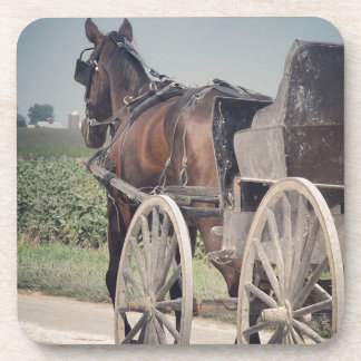 Amish Horse Passing The Photographer Coaster