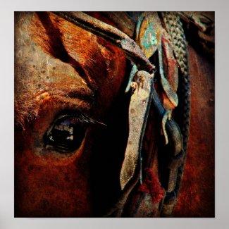 Amish Horse Print