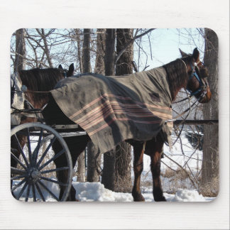 Amish Horses Waiting In Winter Mouse Pad