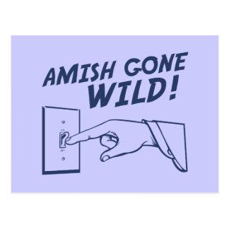 ¡Amish idos salvajes Postales