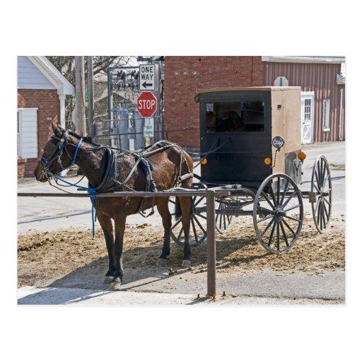 Amish Post Card