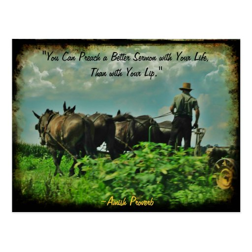 Amish Postcard. Proverb! Add Store or Your Name!