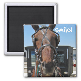 Amish Smile ;o) 2 Inch Square Magnet