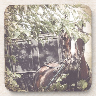amish Waiting Horse Drink Coaster