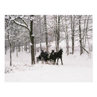 Amish Winter Snow Scene-Postcard Postcard